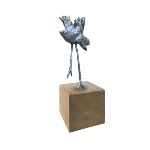 Pajaro-Vogel