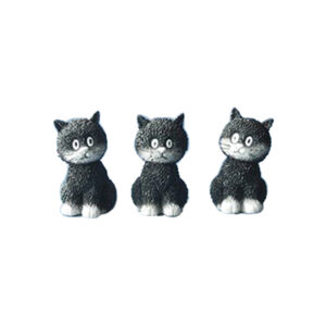 dubout katten